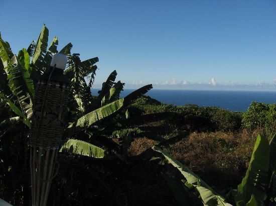 Hale Ho'ola B&B: ocean view form lanai