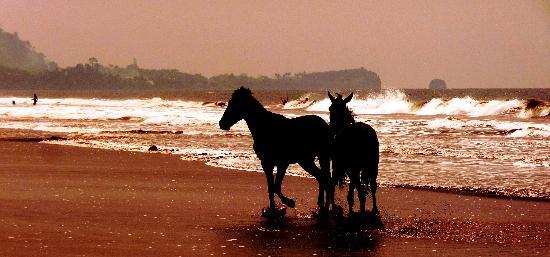 Hotel Seme Beach : A view of the beach2.(Jay n T.I Vacation)
