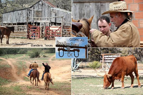 Dixie Dude Ranch - Photo composee - Dixie Dude Ranch