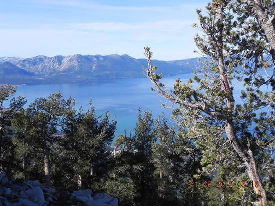 BEST WESTERN Station House Inn: Lake Tahoe
