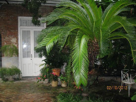 Bourgoyne Guest House: Porte du studio, vue de la cour intérieure