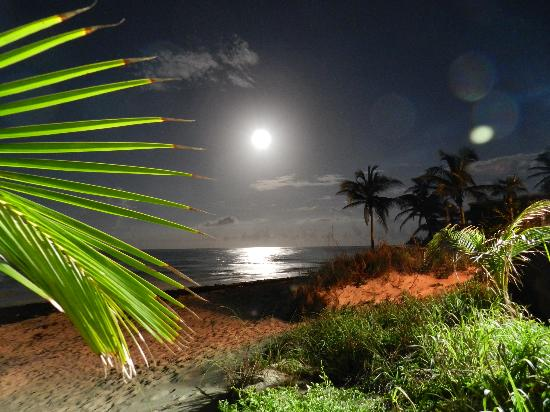 Pineapple Fields Resort: Magic Full Moon-Night at Tippy's