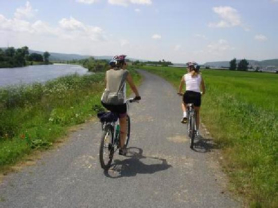 Ave Bicycle Tours - Day Tours: Cycling path