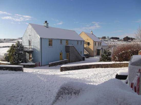 Tory Bush Cottages : White Christmas at Tory Bush