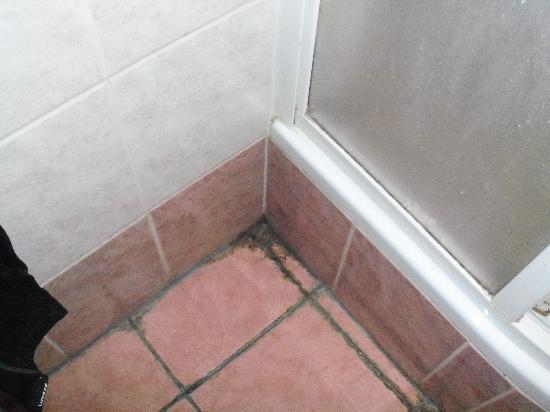 Hotel Residence Tabor: sporcizia nel bagno...