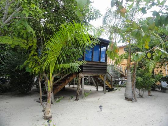Harry's Cozy Cabanas: the cabana we stayed in