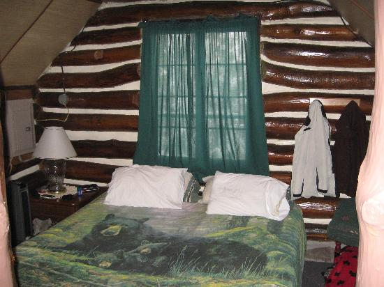 Leber's Log Cabins: Bedroom