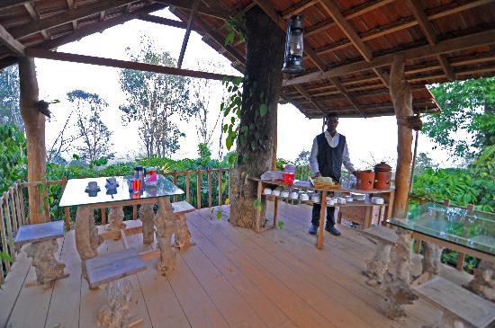 Coffee County Resort: Restaurant