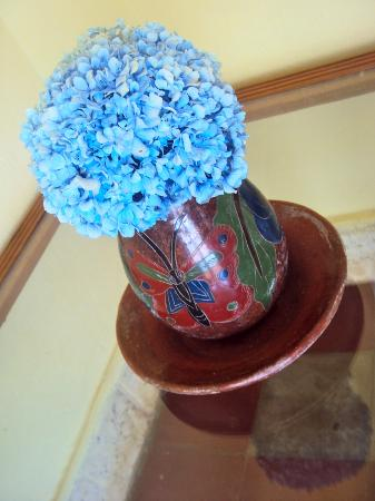 Cafe Las Flores: Local blue hydrangea