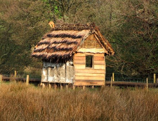 Dubwath Silver Meadows: Norse Shelter