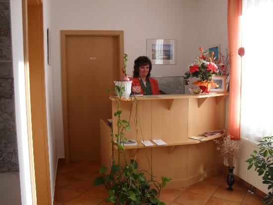 Garni Hotel Villa Tamara : Reception