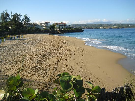 Casa Marina Beach & Reef: quiet beach