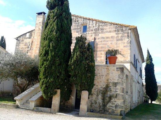 Hotel Le Mas de Peint: Mas De Peinte