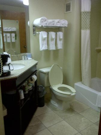 Comfort Inn: Big bathroom