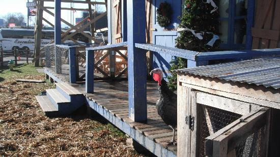 Hatfield & McCoy Dinner Show: Turkey on the front porch!