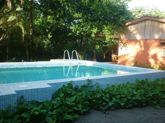 Hotel Don Quichotte: piscine chauffée écologiquement
