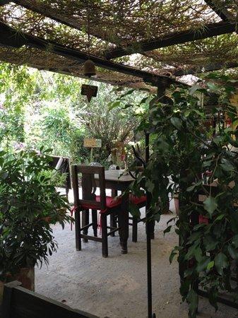 Vivero y Cafe de la Escalonia