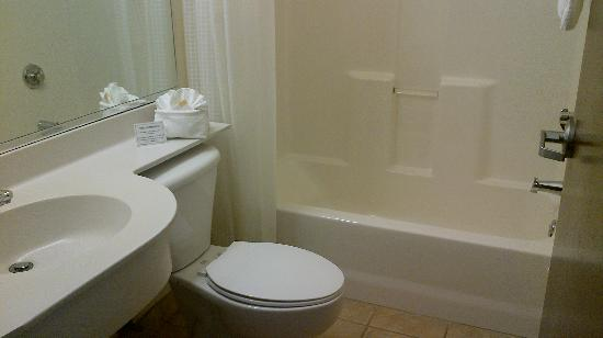 Microtel Inn & Suites by Wyndham Bushnell: Bathroom