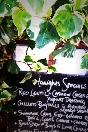 Miriam's Restaurant: tonights specials