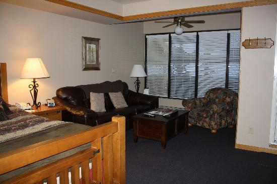 Slopeside Lodge: nice big room and leather couches