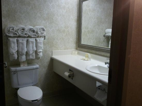 Crowne Plaza Indianapolis Downtown (Union Station): bathroom, older plastic counter & wallpaper