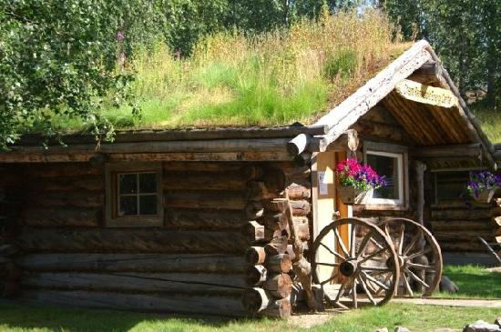 Chena Hot Springs Resort : Buildings have grass?