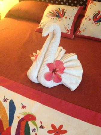 Hacienda Buenaventura Hotel & Mexican Charm All Inclusive: left on our bed when we returned from our day out, those are real flowers.