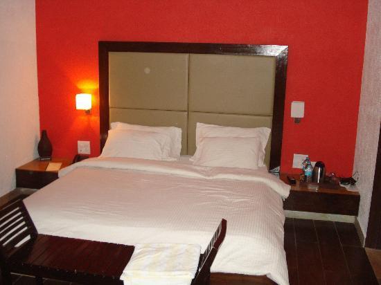 Treasure Island Resorts : The Room
