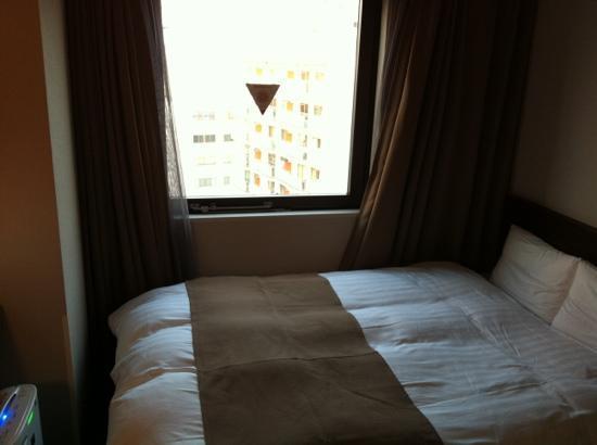 Dormy Inn Himeji : Simple Plan, double no bkfst