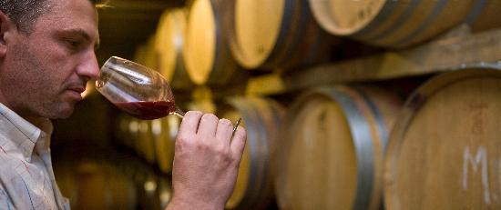 Costa Dorada, Espagne : Déguster de bons vins