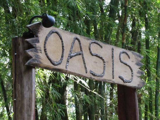 Yelapa Oasis: the path entrance