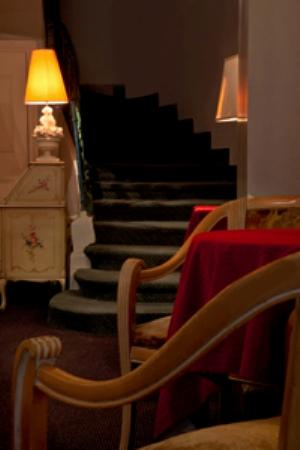 托尼克盧浮酒店照片