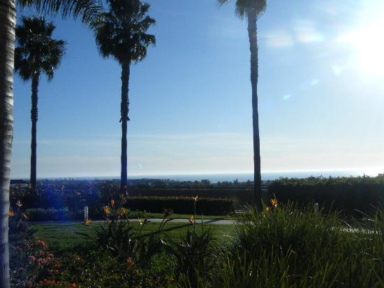Grand Pacific Palisades Resort and Hotel : view