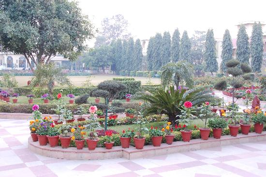 Manesar, Indie: Gardens