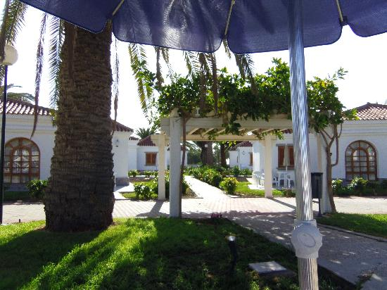 eó Suite Hotel Jardin Dorado: plenty of open space and lovely landscaping