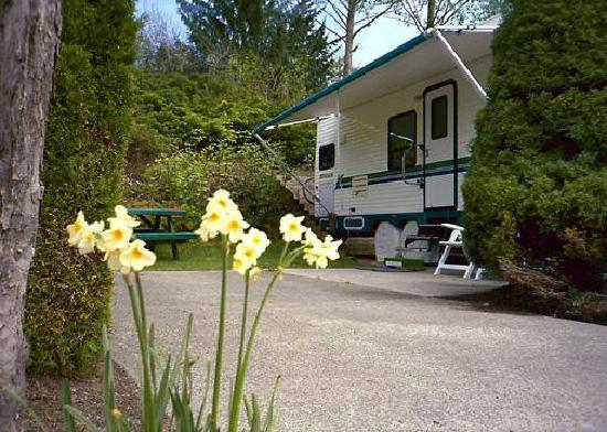 Burnaby Cariboo RV Park: We have 217 beautifully landscaped sites.