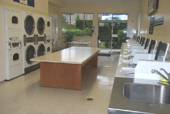 Burnaby Cariboo RV Park: Coin operated laundry open until 11 pm.
