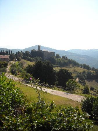 Tenuta di Biscina: il castello