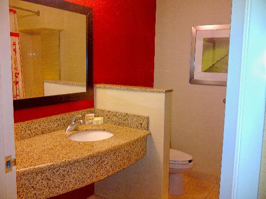 Courtyard Minneapolis Maple Grove/Arbor Lakes : Bathroom.