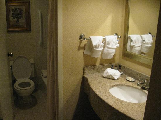 麥金利大飯店照片