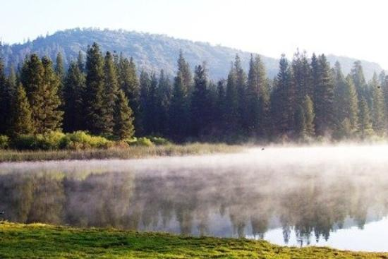 Hume Lake Campgrounds: This is taken of the shore next to the Christina Camp early in the AM just after sunrise.