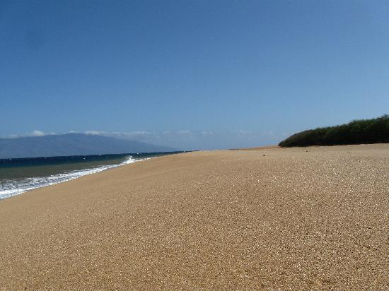 Lanai, Havai: Polihua Beach, standing in the center of the beach looking right
