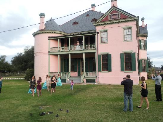 Southdown Museum: Little Pink Houses
