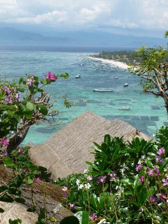 Batu Karang Lembongan Resort & Day Spa: More Views