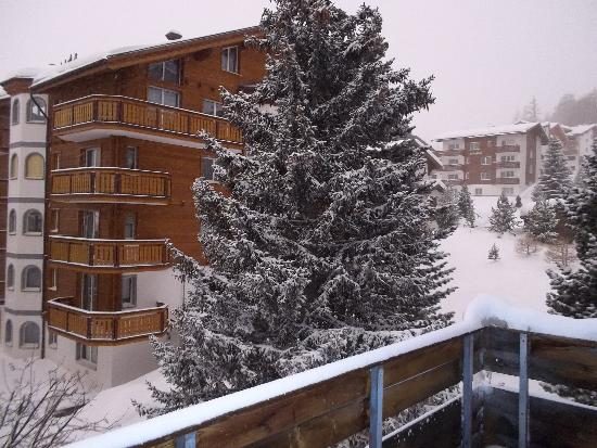 Elite Alpine Lodge: View from balcony on snowy morning