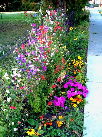 "Bozeman's Lehrkind Mansion Bed and Breakfast: Did someone say ""Flowers""? - they are here for YOU!"