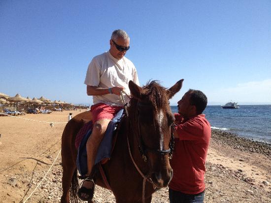 Horseriding Dahab: Paul receives instruction on horse riding at Happy Life Village, Dahab