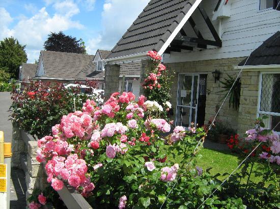 Rose Court Motel: Devon Street View