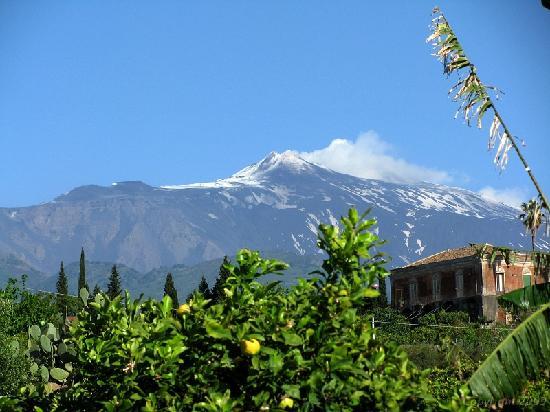 أجريتوريزمو إل ليمونيتو: Mt Etna