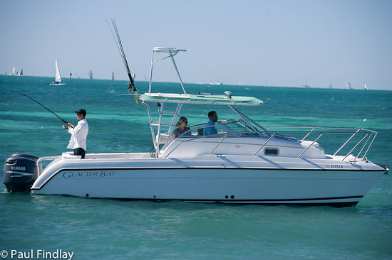 Key West Sea Life Private Charters